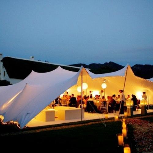 50x40 Stretch Tent - Chino - Wedding